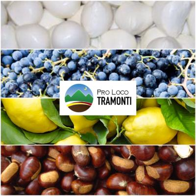 Pro Loco Tramonti - Salerno. Mozzarella, vino, limoni, castagne